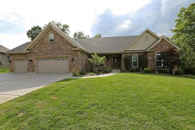 High Ridge Single Family Home For Sale: 1281 Diamond Valley Drive
