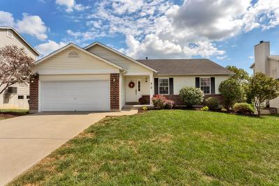Wentzville Single Family Home For Sale: 818 Whisper Creek Court