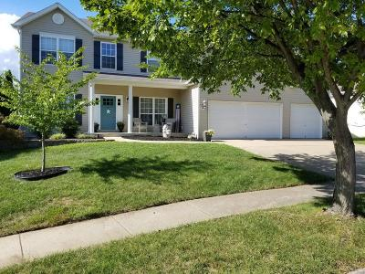 Single Family Home For Sale: 1133 Warm Winds Drive