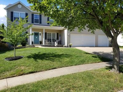 O'Fallon Single Family Home For Sale: 1133 Warm Winds Drive