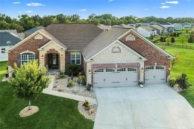 Foristell Single Family Home For Sale: 14 Swope Park Court