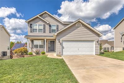 ST CHARLES Single Family Home For Sale: 417 Morrow Glen Court