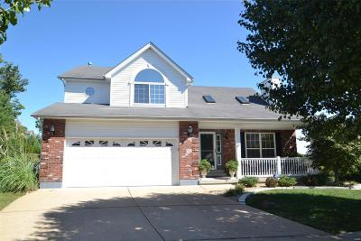 Single Family Home For Sale: 503 Winter Garden Drive