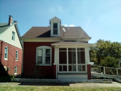 Belleville Single Family Home For Sale: 1016 South Charles Street