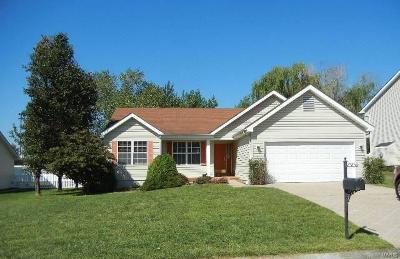 Single Family Home For Sale: 133 Bouquet Court