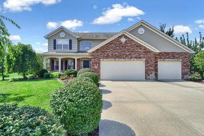 O'Fallon Single Family Home For Sale: 1307 Arbor Green Trail