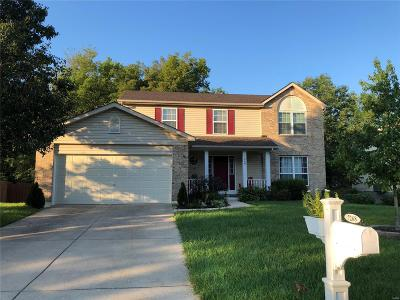 Dardenne Prairie Single Family Home For Sale: 7268 Picasso