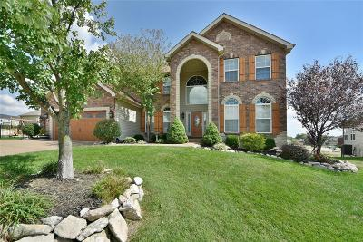 Wentzville Single Family Home For Sale: 15 Swope Park Court