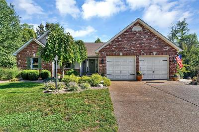 Labadie Single Family Home For Sale: 189 Creek Bottom
