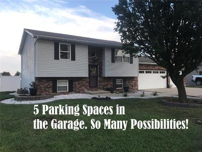 Granite City Single Family Home For Sale: 2628 Jason