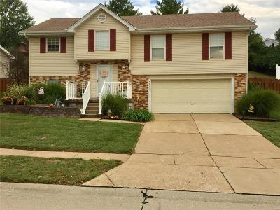 St Louis Single Family Home Coming Soon: 5631 Winter Garden Court