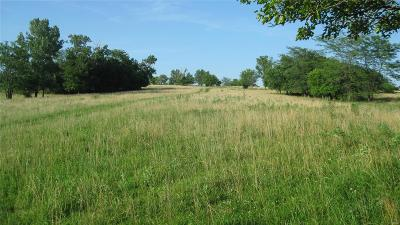 Adair County, Audrain County, Clark County, Knox County, Lewis County, Macon County, Marion County, Monroe County, Pike County, Ralls County, Scott County, Shelby County Farm For Sale: Hwy J And Dairy Ave - 156 Acre