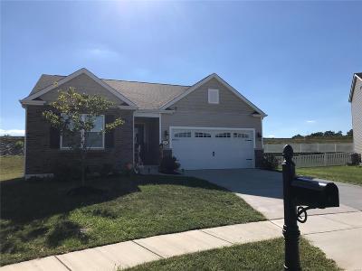 O'Fallon Single Family Home For Sale: 48 Birch Brook Court