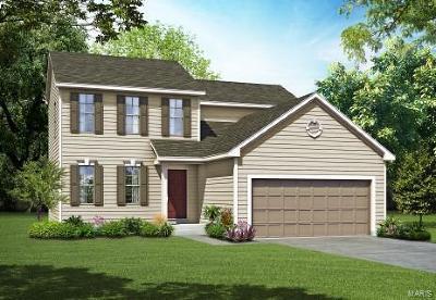 O'Fallon Single Family Home For Sale: 1 Tbb-Winfrey @ Montrachet