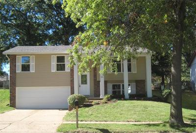 Ballwin Single Family Home For Sale: 364 Towerwood Drive