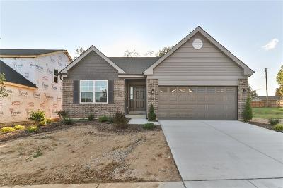 St Louis Single Family Home For Sale: 9507 Forman View Drive