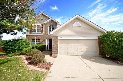 O'Fallon Single Family Home For Sale: 1428 Schwarz Meadow Drive