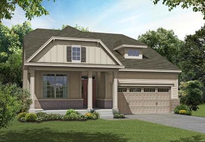 Wildwood Single Family Home For Sale: 1 Tbb-Denmark 1.5 @main St Cross