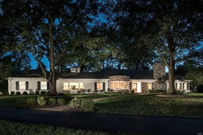 luxury homes for sale in st louis mo rh thecullenteam com Nelly House in St. Louis Lake St. Louis