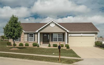 Wentzville Single Family Home Coming Soon: 401 Stone Park