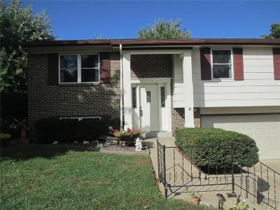 Washington Single Family Home For Sale: 805 Fieldcrest Drive