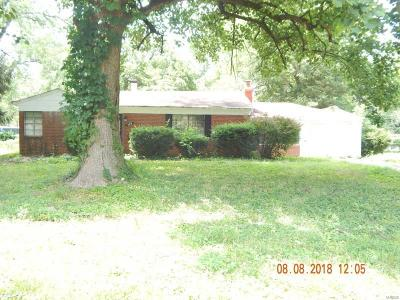 Single Family Home For Sale: 529 Ford