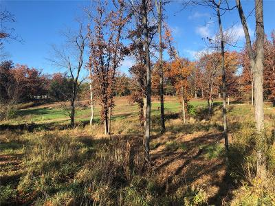 Lincoln County, St Charles County, St Louis City County, St Louis County, Warren County Residential Lots & Land For Sale: 3545 Cappeln Osage Road