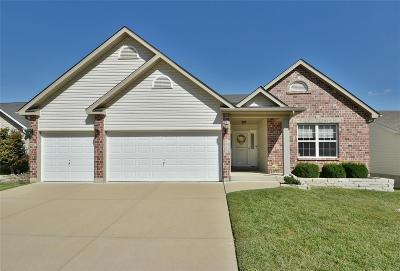 Jefferson County, Madison County, St Francois County Single Family Home For Sale: 2915 Glaize Creek Drive