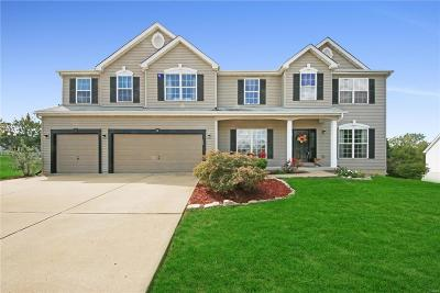 Stone Meadows Single Family Home Contingent No Kickout: 13 Busse Court