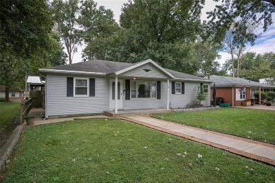 Belleville Single Family Home For Sale: 643 South Missouri