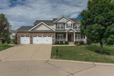 Belleville Single Family Home For Sale: 2205 Jack Nicklaus Drive