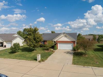 Smithton Single Family Home For Sale: 416 Fieldview Drive