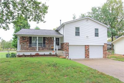 Single Family Home For Sale: 158 Parkside Acres