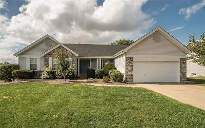 Wentzville Single Family Home For Sale: 1465 Prospect Lakes
