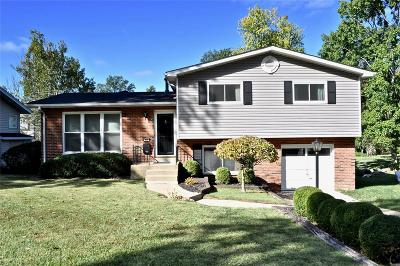Single Family Home For Sale: 955 Glenway Drive