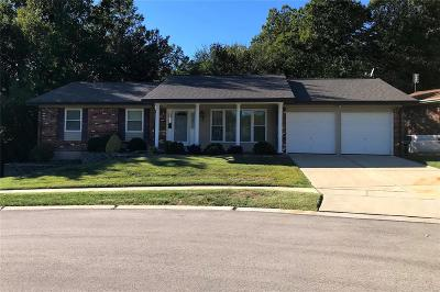 Single Family Home For Sale: 5121 Flametree Court
