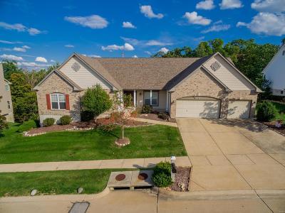 Eureka Single Family Home For Sale: 974 Stone Spring Drive