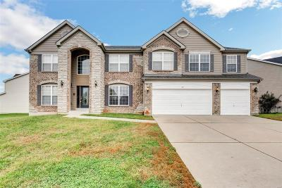 St Charles Single Family Home For Sale: 471 Olde Court