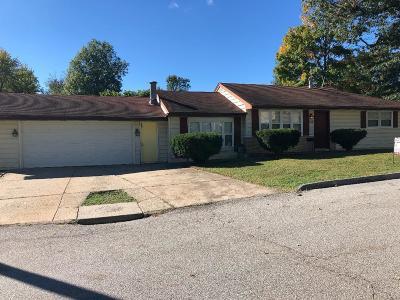 Single Family Home For Sale: 215 Ballman Avenue