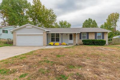 St Charles Single Family Home For Sale: 2986 Aintree