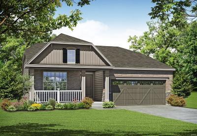 Dardenne Prairie Single Family Home For Sale: 1 Tbb - Davinci @ Cordoba