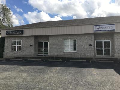 Troy Commercial For Sale: 199 E Hwy 40