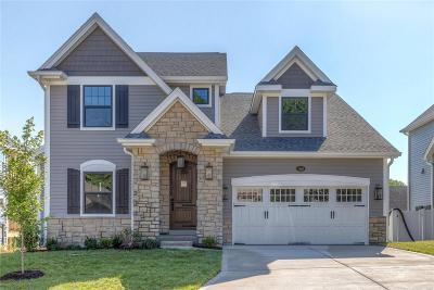 Single Family Home For Sale: 1160 Vinetta Drive