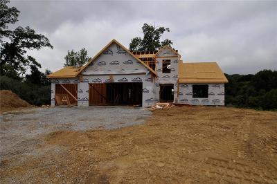 Caseyville New Construction Option: 916 Half Moon Lane
