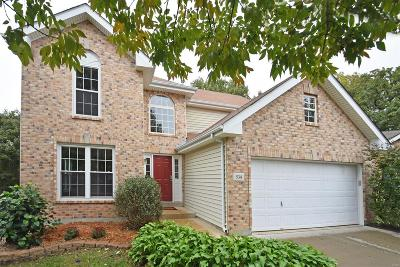 Single Family Home For Sale: 534 Pope View Ct