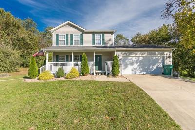 Caseyville Single Family Home For Sale: 141 Hillside Drive