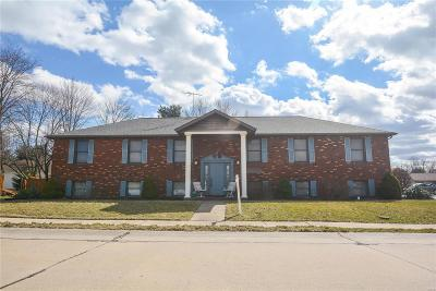 O'Fallon Commercial For Sale: 125 Springfield Court