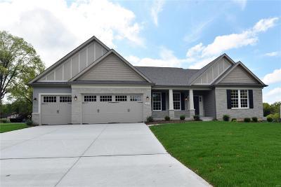 St Charles Single Family Home For Sale: 2935 Kandahar Drive