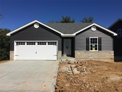Wentzville Single Family Home For Sale: 48 Huntleigh Park Court