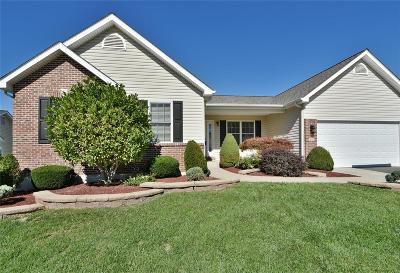 St Peters Single Family Home For Sale: 347 Fallon Parkway